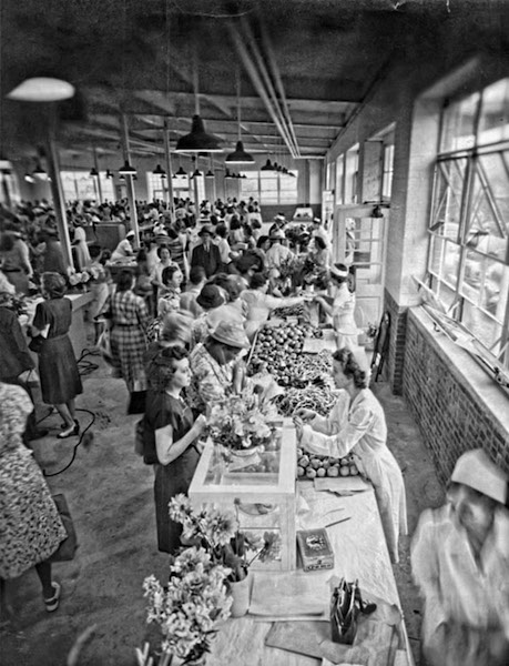 """She Ought to Have Taken Those Cakes"": Southern Women and Rural Food Supplies"