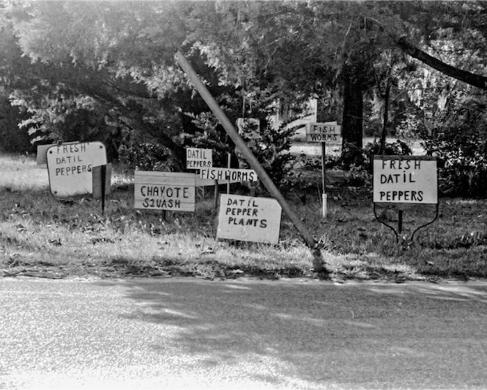 Bottling Hell: Marketing St. Augustine, Florida's Datil Pepper