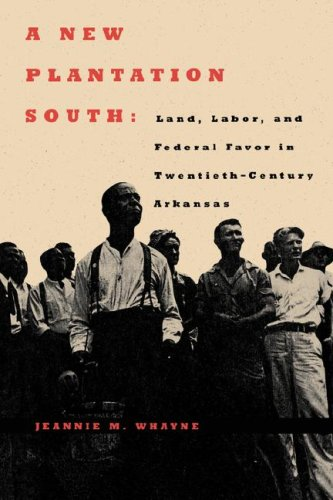 A New Plantation South: Land, Labor, and Federal Favor in Twentieth-Century Arkansas by Jeannie M. Whayne (Review)